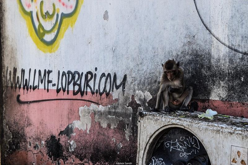 Murales – Lopburi