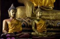 due-buddha-in-meditazione