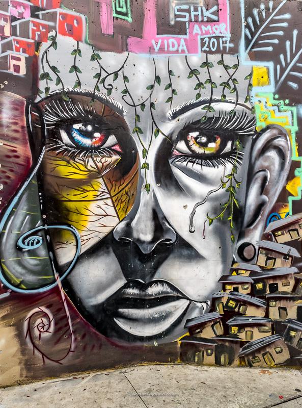 Murales faccia de la Pacha mama, Comuna 13